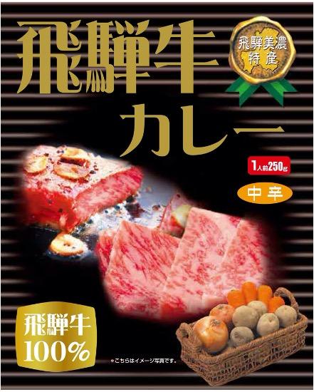 飛騨牛カレー(250g/1人前/中辛)